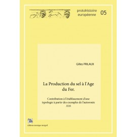 La Production du sel à l'Age du Fer.