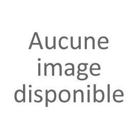L'établissement rural antique de Soumaltre (Aspiran, Hérault).